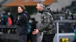"""Marco Rose (r.) und sein künftiger BVB-""""Schattenmann"""" Edin Terzic"""