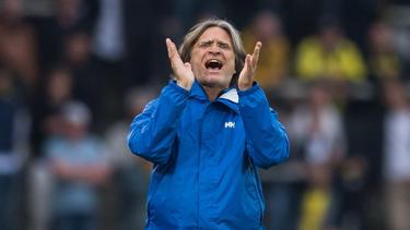FC Schalke 04 bedient sich im Nachwuchs von BVB, HSV und 1. FC Köln