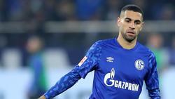 Omar Mascarell ist beim FC Schalke 04 unumstrittener Stammspieler