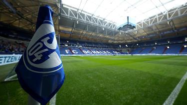 Der FC Schalke 04 soll an Amar Catic interessiert sein