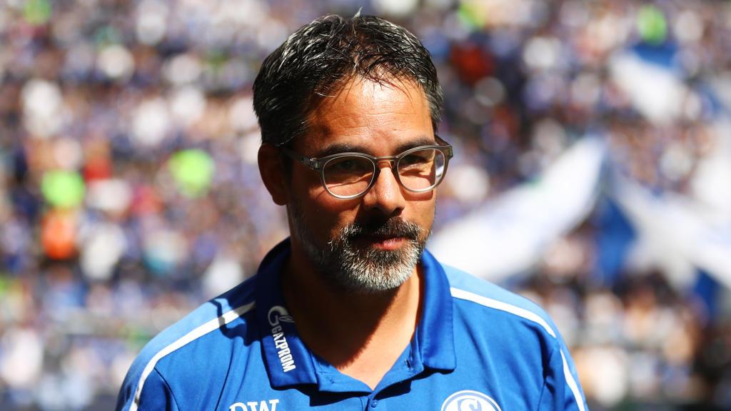 David Wagner coacht seit diesem Sommer den FC Schalke
