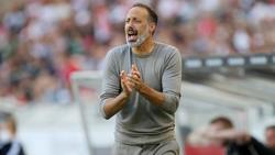 Pellegrino Matarazzo ärgern die Corona-Fälle beim VfB Stuttgart