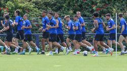 Der FC Schalke will im Sommer kaum ein Stein auf dem anderen lassen