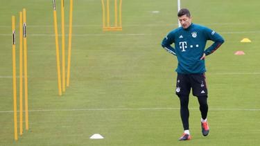 Robert Lewandowski ist Leistungsträger des FC Bayern
