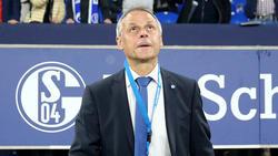 Ex-Nationalspieler Olaf Thon kritisiert Bundestrainer Joachim Löw