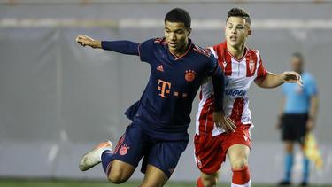 Malik Tillman spielt in der U19 des FC Bayern