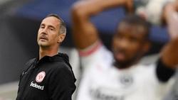 Adi Hütter ist der Trainer von Eintracht Frankfurt
