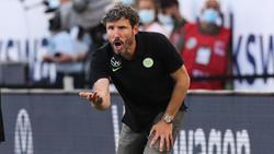 Mark van Bommel fühlt sich trotz des turbulenten Starts wohl in Wolfsburg