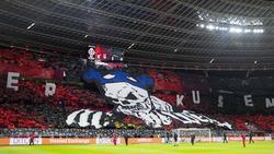 In der Europa League gegen den FC Porto soll es in der BayArena ähnlich aussehen