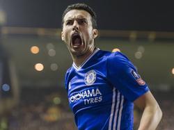 Pedro schreeuwt het uit na een doelpunt voor Chelsea in de FA Cup. (18-02-2017)