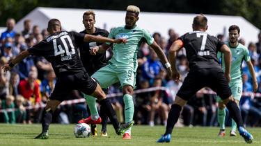 Joelinton verlässt Hoffenheim wohl gen England