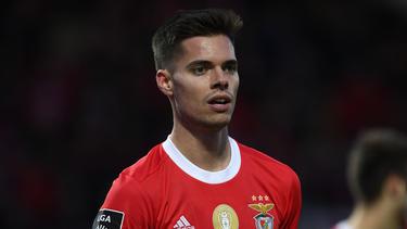 Julian Weigl wechselte vom BVB zu Benfica
