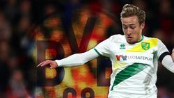 BVB-Juwel Felix Passlack kommt bei Norwich City nicht in Tritt
