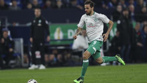 Werder-Angreifer Martin Harnik wird vom Hamburger SV umworben