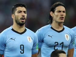 Suárez y Cavani volverán a vestirse de celeste.