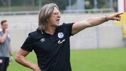 Norbert Elgert sieht Defizite bei den Talenten des FC Schalke 04