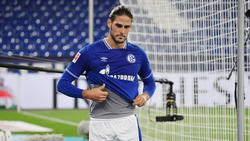 Schalke muss ohne Paciência auskommen
