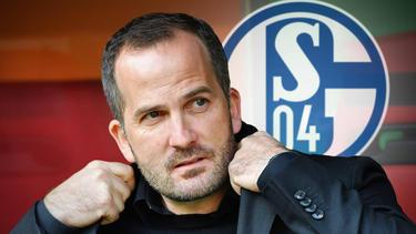 Manuel Baum ist neuer Coach des FC Schalke 04