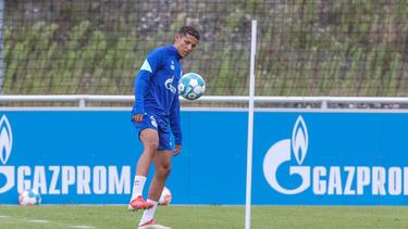 Verlässt den FC Schalke 04 für eine Saison: Amine Harit