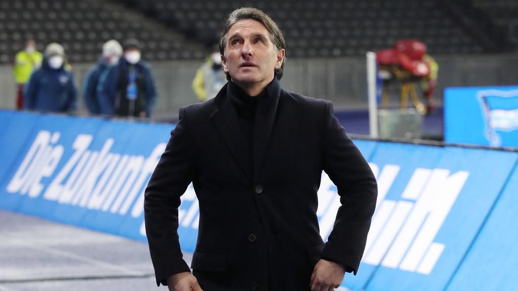 Bruno Labbadia könnte Trainer beim FC Schalke 04 werden
