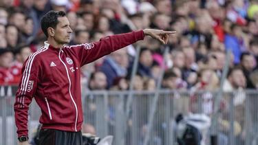 Dino Toppmöller ist Co-Trainer des FC Bayern