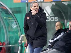 Die Mannschaft von Dietmar Kühbauer geht als Favorit ins Duell mit dem SKN