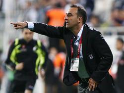 Carlos Carvalhal wird Trainer bei Sheffield Wednesday