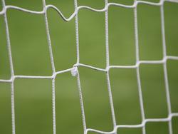 Das ominöse Tornetz, das den Treffer von Stefan Kießling durchließ