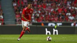 Ruben Dias (Benfica)