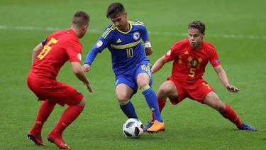 Europaweit begehrt: Dinamo-Zagreb-Talent Ajdin Hasić (m.)