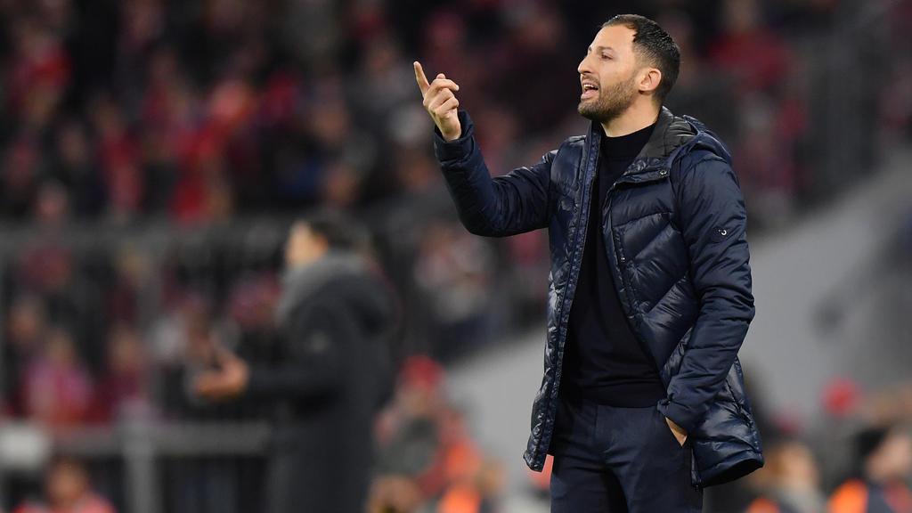Domenico Tedesco und die Schalker durchleben eine harte Saison