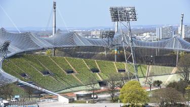Im Olympiastadion könnte bald wieder Fußball gespielt werden
