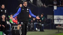 Schalkes Trainer David Wagner wird für seine Rote Karte im Pokal nicht gesperrt
