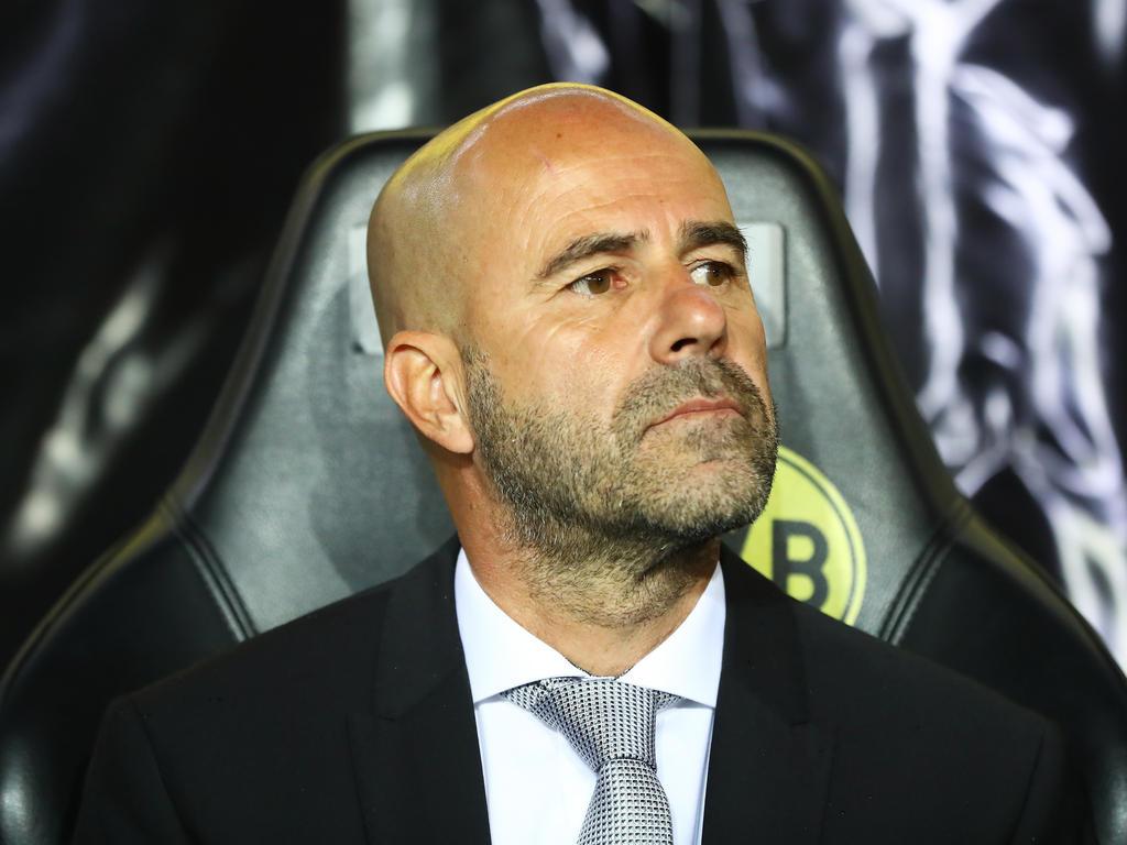Peter Bosz ist vom Ancelotti-Aus enttäuscht