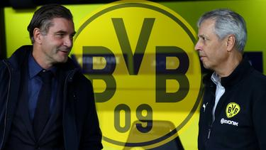 Michael Zorc und Lucien Favre (re.) sind mit dem BVB auf Stürmersuche