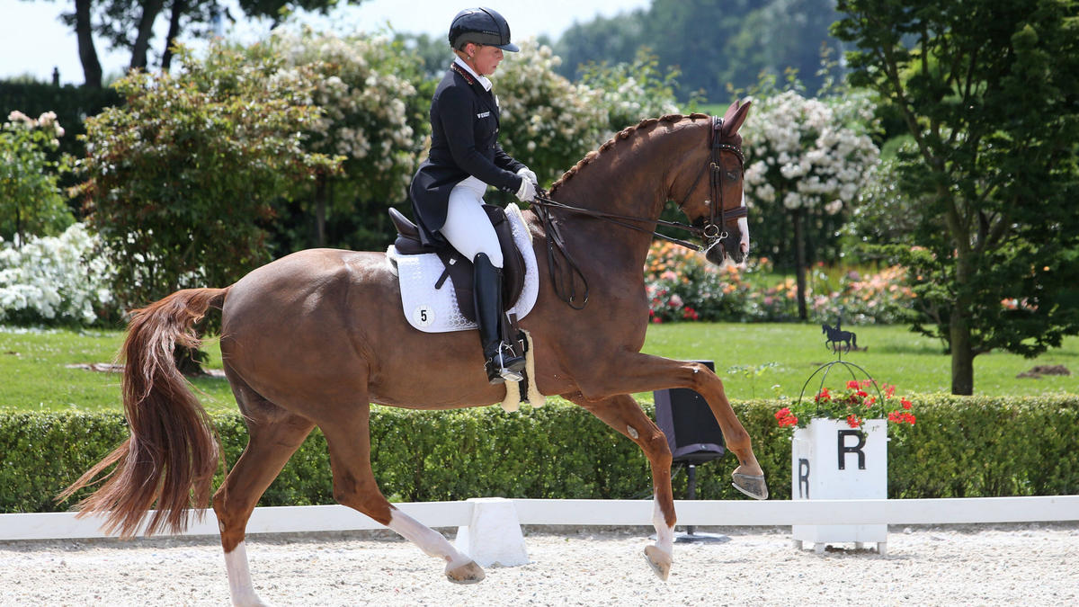 Isabell Werth will in Tokio erneut Olympiasiegerin werden