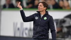 Oliver Glasner trifft mit Wolfsburg auf Donezk