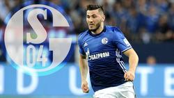 Der FC Schalke 04 leiht Sead Kolasinac bis zum Saisonende aus