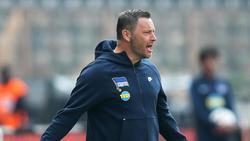 Pál Dárdai wäre mit einem Punkt in Hoffenheim zufrieden