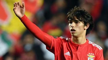 Joao Félix ist der letzte Super-Export von Benfica SL