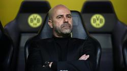 Peter Bosz hat über seine Zeit beim BVB gesprochen