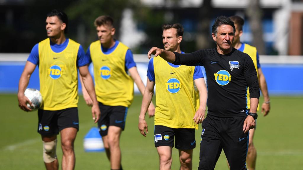 Bruno Labbadia und Hertha BSC müssen beim BVB antreten