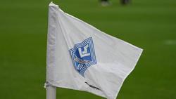 Der DFB hat Waldhof Mannheim zu einer Stellungnahme aufgefordert