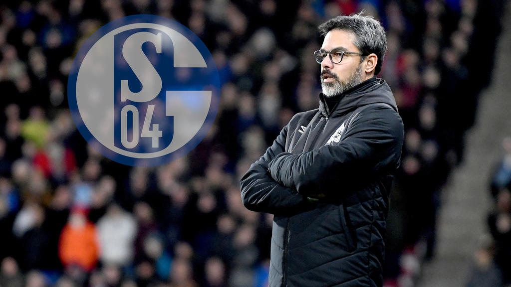 David Wagner will den FC Schalke zurück in die Erfolgsspur führen