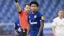 Genießt die Unterstützung beim FC Schalke 04: Weston McKennie