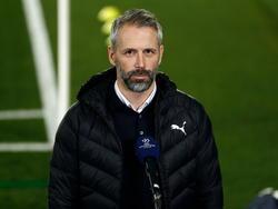 Marco Rose gilt als möglicher Nachfolger von Lucien Favre beim BVB