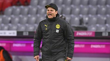 Edin Terzic will dem BVB erhalten bleiben