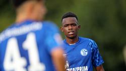 Der Treffer von Schalke-Angreifer Rabbi Matondo reichte nicht zum Sieg