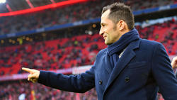 Hasan Salihamidzic hat sich zu wichtigen Themen rund um den FC Bayern geäußert
