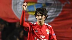 Joao Félix gilt als der neue Stern am Fußballhimmel